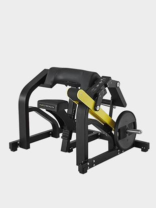 Bicep Curls Machine: Buy Bicep Curls Machine for Sale Online