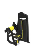 Bicep Curl Tricep Extension Machine for Sale Online