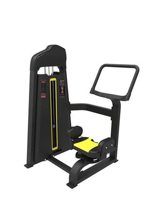 Rotary Torso Exercise Machine for Sale, Buy Rotary Torso Exercise Machine Online