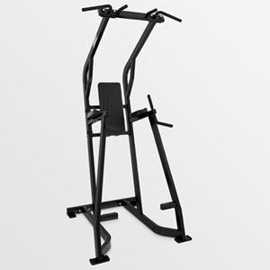 Hammer Strength Chin Dip Leg Raise For Sale