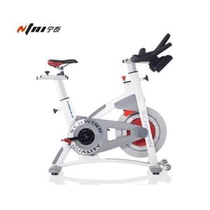 Schwinn AC Performance Plus Indoor Cycle for Sale
