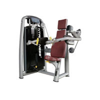 Buy Deltoid Raise Machine Online