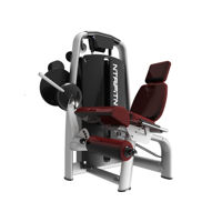 Seated Leg Extension Machine for Sale, Buy Leg Extension Online