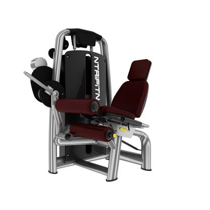Leg Curl Gym Machine for Sale, Buy Leg Curl Online