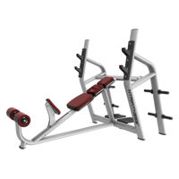 Olympic Incline Bench for Sale, Buy Olympic Incline Bench Online