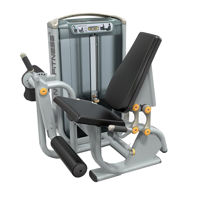 Leg Extension Machine: Buy Leg Extension Machine for Sale Online
