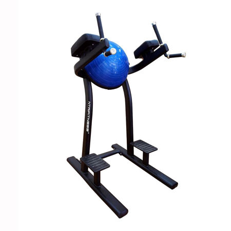 Leg Raise Machine for Sale, Buy Leg Raise Online