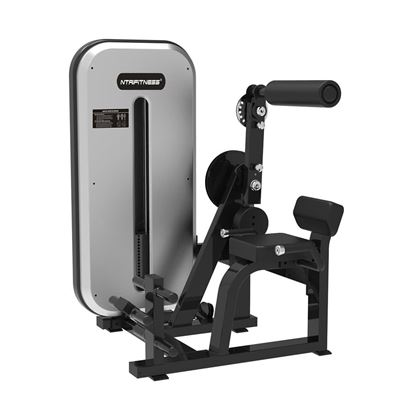 Back Extension Machine for Sale, Buy Back Extension Online