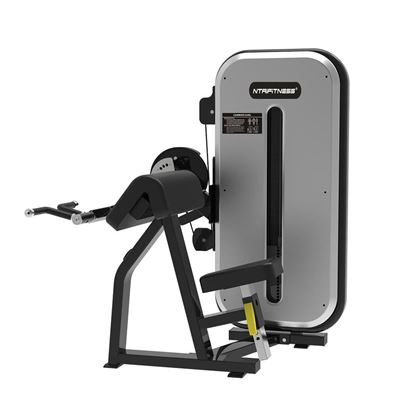 Bicep Tricep Machine for Sale, Buy BICEPS/TRICEPS Machine Online