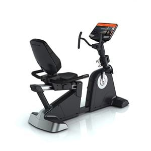 Commercial Recumbent Exercise Bike for Sale