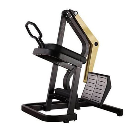 Picture for category Calf  Glute GHD Machines