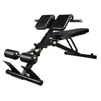 Workout Bench with Back Extension