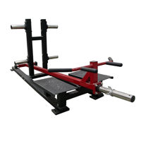 T Bar Row Machine for Sale