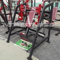 Hammer Strength Plate-Loaded Pullover For Sale