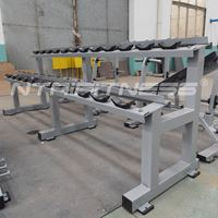 Hammer Strength Two Tier Dumbbell Rack for Sale