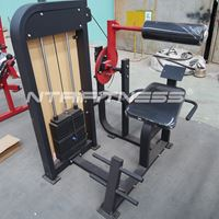 Hammer Strength Select Back Extension for Sale